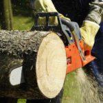 Пилы бытовые для деревообработки